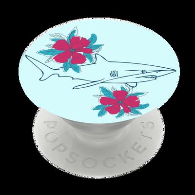 Silky shark flowers